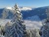 Apart Tyrol Wintertraum im Zillertal