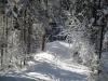 Winterwanderung Apart Tyrol