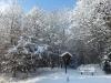 Winterwanderung Chalet Tyrol