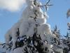 Winterwonderland im Zillertal